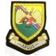 Argus - 14 Intelligence Company  Blazer Badge
