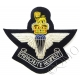 The Parachute Regiment QC Deluxe Blazer Badge