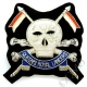 QRL Queens Royal Lancers Deluxe Blazer Badge