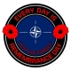 NATO North Atlantic Treaty Organisation Remembrance Day Sticker
