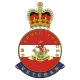 Duke Of Wellingtons West Riding Regiment HM Armed Forces Veterans Sticker