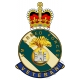 Royal Inniskilling Fusiliers HM Armed Forces Veterans Sticker