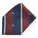 RAF Royal Air Force Observer Tie